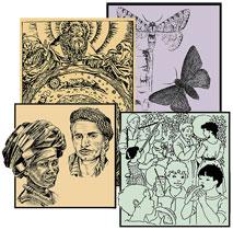 Sammlung von 7 Unterrichtsentwürfen