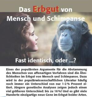Das Erbgut von Mensch und Schimpanse. Fast identisch, oder ...?